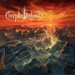 copcrypticforest