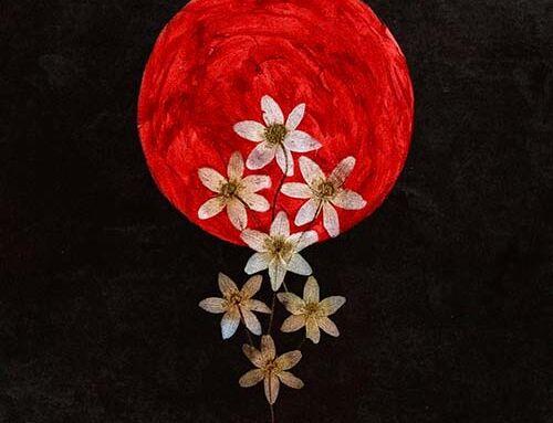 "SWALLOW THE SUN, annunciano il nuovo album ""Moonflowers"""